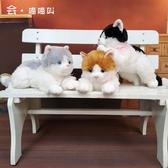 公仔玩偶仿真貓咪玩偶毛絨玩具公仔可愛會叫新款陪睡覺小貓布偶抱枕趴趴貓-『美人季』