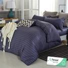 雙人 152x188cm 特頂100%天絲 60s500針紗 床包四件組(兩用被套)-致雅【金大器】