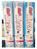 影音專賣店-B16-015-正版VCD-動畫【鄰家女孩 01-101話 全集】-套裝 國語發音
