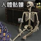 【妃凡】萬聖節超夯!人體骷髏 人骨頭 骨...