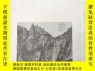 二手書博民逛書店罕見盛世丹青 中國書畫Y375384