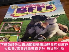 二手書博民逛書店Animal罕見BFFs Extraordinary ties between unusual friends