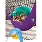 CSP-S 鼠屋 老鼠貂類遊戲屋 寵物吊床 老鼠貂類小屋 刺蝟小屋 兩用 小尺寸 美國LIXIT®立可吸