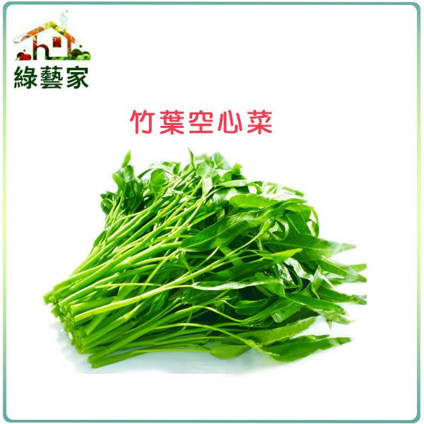【綠藝家】A23.竹葉空心菜種子500顆 (竹葉種蕹菜)