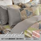 【班尼斯名床】【3.5尺單人加大百貨專櫃級床包枕套組】【Forest森林系列】精梳純棉/寢具