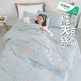 『TCL31』奧地利100%TENCEL涼感純天絲6x7尺雙人特大床包枕套三件組(不含被套)床單 床套 床巾
