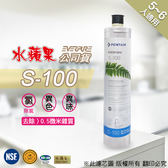 水蘋果【快速到貨~刷卡含稅】水蘋果公司貨 EVERPURE S100 濾心 ,適用 愛惠浦 淨水器