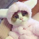 火爆貓咪衣服搞笑搞怪變身裝小貓幼貓寵物保暖加厚秋冬季網紅同款 韓語空間