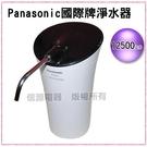 【信源】Panasonic國際牌淨水器《TK-CS20 》線上刷卡~免運費 (不含安裝)