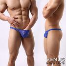 水精靈精品店 VENUS 蕾絲 性感情趣 透明男丁字褲 藍