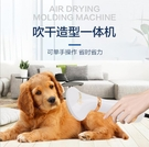 快速出貨 寵物吹風梳熱風拉毛2合1吹風機狗狗貓咪吹幹梳理一體機電吹風igo