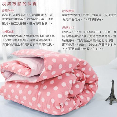 【安妮絲Annis】100%台灣製造、特級100%天然水鳥雙人羽絨被、6X7尺水玉點點粉、蓬鬆輕盈保暖不跑毛