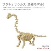 【日本KAWADA河田】Nanoblock迷你積木-腕龍(化石版本) NBC-114