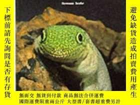 二手書博民逛書店Keeping罕見and Breeding GeckosY362