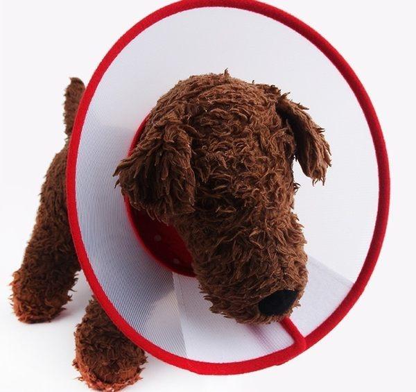 L號 寵物防舔防抓套/塑膠頭套/伊莉莎白頭套 4種尺寸 顏色隨機【4G手機】