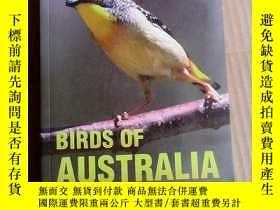 二手書博民逛書店Birds罕見of Australia: A Photographic Guide 澳大利亞鳥類指南 英文原版 銅