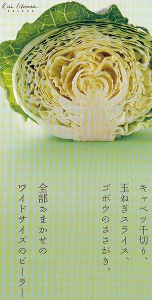 【小福部屋】日本 貝印 切絲器 便當 蔬菜 蔥絲 輕巧好拿 方便安全 沙拉 前菜 刨絲【新品上架】