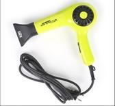 吹風機PD-1650韓國吹風機理髮店定型電吹風機冷熱風家用髮廊負離子吹風 莎瓦迪卡