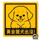 【收藏天地】萌犬出沒*NEW寶貝貼-黃金獵犬 /  文創  家飾 居家 環保 貼紙