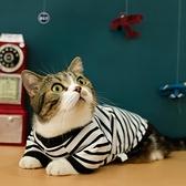 貓咪衣服夏裝薄款帥氣防掉毛幼貓小貓貓藍貓英短寵物用品春裝夏季 橙子精品