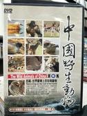挖寶二手片-P17-177-正版DVD-其他【中國野生動物4:西藏珍稀動物】-休閒類(直購價)