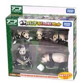 特價 TOMICA多美動物園 熊貓家族禮盒組_AN39995
