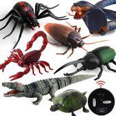 整蠱玩具遙控蜘蛛男孩電動玩具嚇人仿真蟑螂螞蟻昆蟲動物蜈蚣蛇