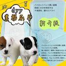 【培菓平價寵物網】日單噓噓價》dyy業務...