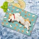 寵物涼墊 寵物冰墊降溫貓咪墊涼席墊耐咬狗墊子睡墊狗狗【快速出貨】