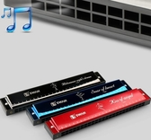 口琴 天鵝口琴初學者高級成人兒童24孔復音c調口琴入門學生自學樂器琴   艾維朵