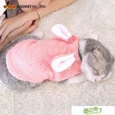(交換禮物)小貓咪衣服女幼貓藍貓小奶貓保暖英短可愛寵物穿的搞笑貓貓秋冬裝