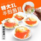 【大口市集】鮮美半殼鮮凍大扇貝(400g/包)