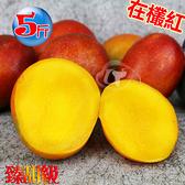 風之果 枋山42年老欉臻甜級愛文芒果禮盒5台斤(12顆)250-230g