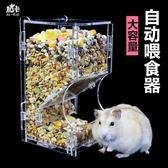 餵食器 倉鼠喂食器食盒可固定松鼠刺猬豚鼠金絲熊食盆防翻倉鼠自動喂食器 星河光年DF