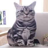 仿真3D貓咪抱枕公仔毛絨玩具抱著睡覺的娃娃喵星人搞怪床頭靠墊 【2021特惠】