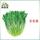 【綠藝家】A38.壬生菜種子500顆
