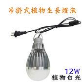 垂掛式 植物生長燈 led  10入起訂 12W / 12瓦  E27 LED植物燈泡  -全藍光 JNP016