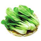 青江菜/約250g*2包★安全蔬菜...