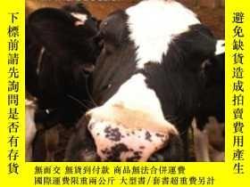 二手書博民逛書店Critical罕見Animal Studies-關鍵動物研究Y436638 Dawne Mccance Su