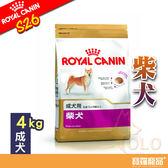 皇家S26柴犬成犬 4kg/狗飼料【寶羅寵品】