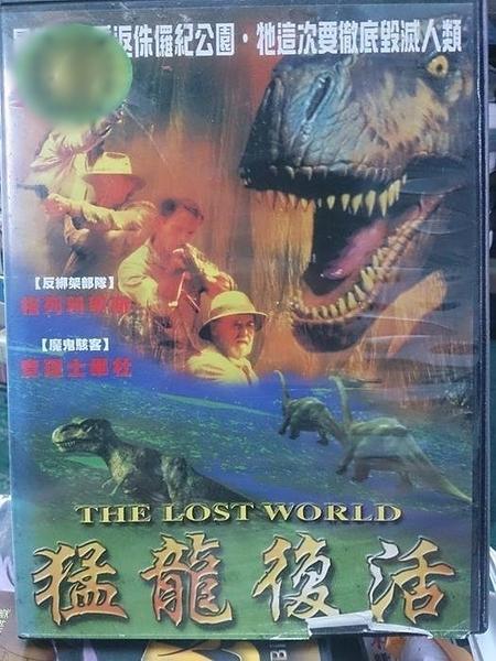 挖寶二手片-Y116-216-正版DVD-電影【猛龍復活】-格列科寧斯 查理士畢杜(直購價)
