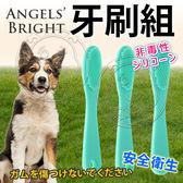 【zoo寵物商城】美國Angels Bright天使牌》無毒矽膠牙刷組(3入)