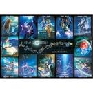 【台製拼圖】HM1000-102 黃道十二宮 the Zodiac  夜光拼圖 1000片盒裝拼圖