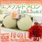 【果之蔬-全省免運】日本高知縣溫室綠肉哈密瓜(原裝箱2顆-約3.5kg±10%