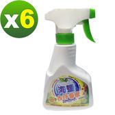 【環寶靈】海鹽去汙專家300ml(6瓶/組)