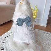 KZ 小白裙子 初春夏純棉加絨寵物狗狗貓咪衣服泰迪比熊幼犬公主裝4 幸福第一站