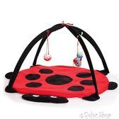 甲殼蟲帳篷寵物用品 貓咪玩具 吊床貓玩具 貓爬架貓用品    color shop