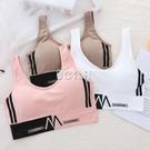 內衣女學生韓版文胸蕾絲美背抹胸吊帶裹胸聚攏運動背心女