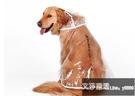大狗狗雨衣薩摩耶哈士奇金毛拉布拉多雨披中型大型犬雨傘防水衣服-『艾莎』