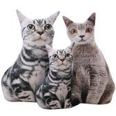 創意仿真貓咪抱枕大臉貓3d毛絨玩具